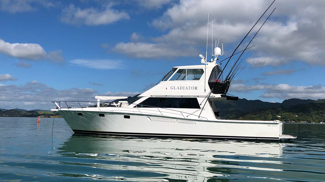 sailing charter auckland