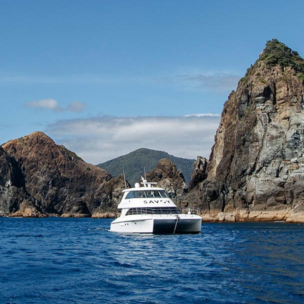 Savoy luxury launch anchored in a rocky bay on Great Barrier Island